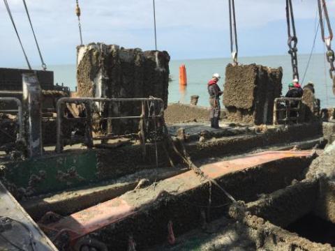 Salvage Flinterstar®afdeling Scheepvaartbegeleiding